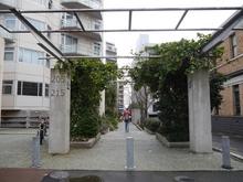 205 Hobson Street, Auckland Central, Auckland City, Auckland